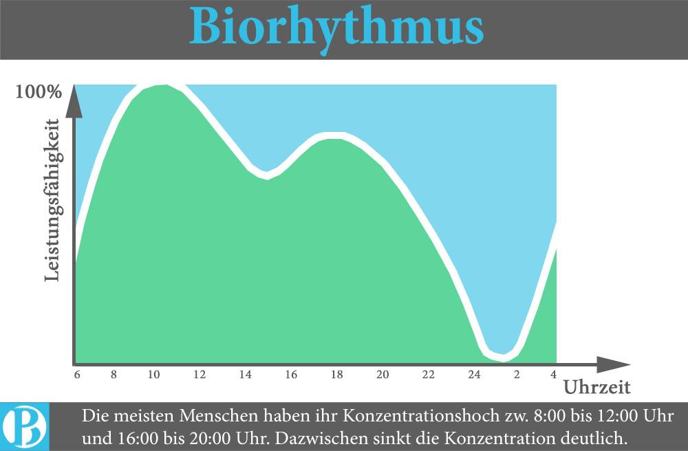 zeitmanamgement-biorhythmus